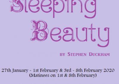 Sleeping Beauty draft poster